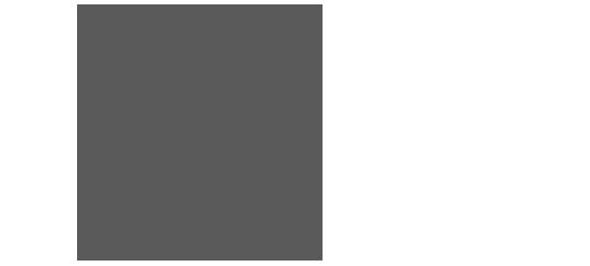 skatteverket-liten-logo